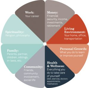 As an executive coach, I use the life wheel to help my clients identify their top priorities.